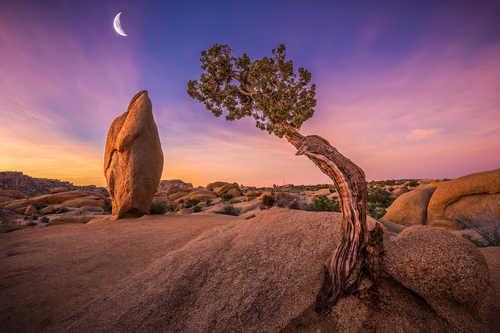 Битва фотографов - дань восходящей луне